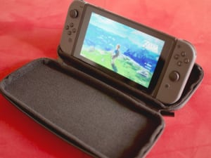 Switch travel case stand